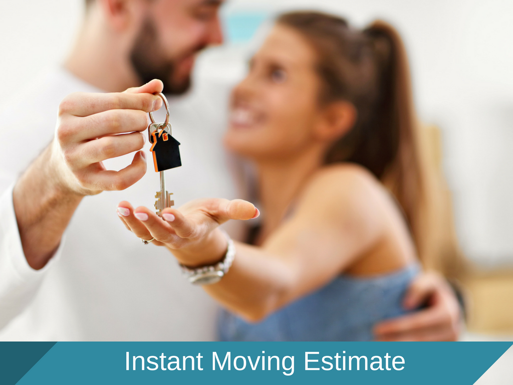 Long Distance Moving Estimate